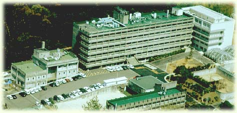 Air View of Primate Research Institute